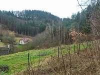 Olešnice u Turnova - chalupa k pronajmutí - 10