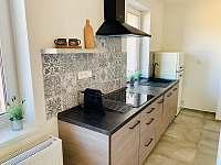 Apartmán 2 kuchyně - ubytování Holín