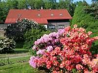 Takhle nádherně je u nás na jaře..... - pronájem chalupy Skuhrov