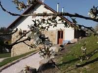 Ubytování V Hradu Rovensko pod Troskami - chalupa k pronajmutí