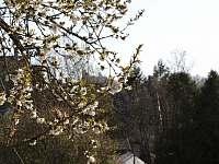 V Hradu - výhled z domu na Trosky - Rovensko pod Troskami