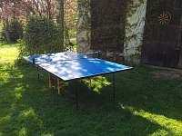 oblíbený stolní tenis - chalupa k pronájmu Libošovice - Malá Lhota