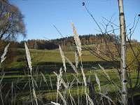 obec Uhlíře, blízké okolí chalupy -