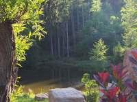 Apardo chata č.2 pohled na rybník Žabák - k pronájmu Libuň - Březka