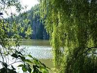 Vježický rybník