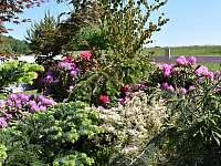 Zahrada jaro - Vyskeř - Mladostov