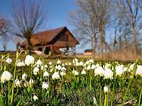 Když u nás začíná jaro - Chuchelna - Lhota