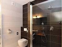 Koupelna ve spodním apartmá