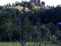 Výhled z chaty - Malá Skála