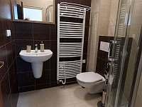 Pokoj č.1 koupelna - Turnov