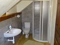třílůžkový pokoj 1.patro - apartmán k pronajmutí Radvánovice