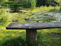 Chata u rybníka - chata k pronájmu - 28 Osek u Sobotky