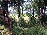 Vrbice nad Cidlinou - chalupa k pronájmu - 14