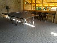 Stolní tenis - chalupa k pronajmutí Karlovice část Svatoňovice
