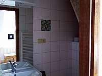 Apartmán 4 - koupelna - Mírová pod Kozákovem - Hrachovice