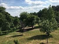 pohled na dolní zahradu od domu