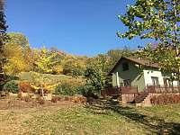 Polosamota u lesa - Brada (podzim) -