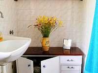 Koupelna v přízemí - Branžež