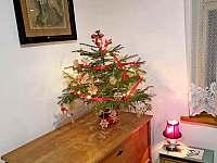 Vánoce - pronájem chalupy Branžež