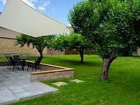 Zahrada za domem se stromy - chata k pronajmutí Osek u Sobotky
