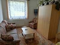 Obývací pokoj - apartmán k pronajmutí Hrubá Skála - Doubravice
