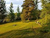 Les - chata k pronajmutí Turnov - Mašov