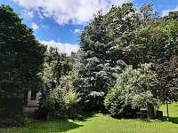 zahrada - chalupa ubytování Zásadka