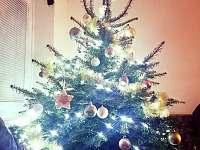 Vánoční Prima chata - Zbirohy