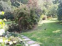 pohled z terasy do zahrady - chalupa k pronájmu Samšina