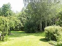 pohled z terasy, zarostlá zahrada poskytuje soukromí - chalupa k pronajmutí Samšina