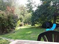 zahrada na konci června - Samšina
