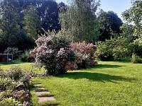 zahrada v červnu - chalupa k pronájmu Samšina