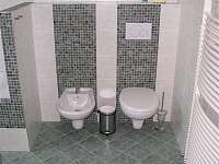 Malá Skála - apartmán k pronájmu - 11