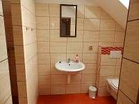 Svatoňovice - apartmán k pronájmu - 14