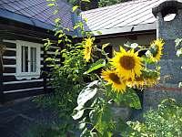 Ubytování Roubenka - chalupa k pronájmu - 3 Michovka
