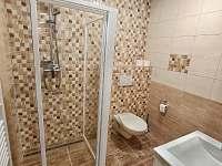 Apartmán pro tři, koupelna - Turnov