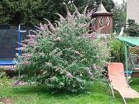 Altánek, zahrada a zázemí - apartmán k pronajmutí Turnov