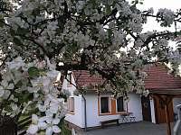 Czech Paradise - chalupa ubytování Mírová pod Kozákovem - Loktuše - 5
