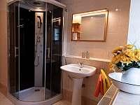 koupelna ve spodním patře - Svojek