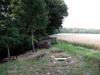 ohniště u chalupy - chata k pronajmutí Dřevěnice