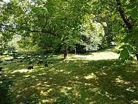 zahrada - Komárov