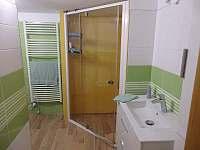 Apartmán č. 1 v přízemí - k pronajmutí Michovka