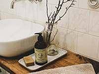Koupelna v přízemí - chalupa k pronajmutí Libošovice