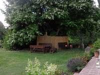 posezení naq zahradě