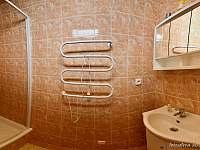 apartman č.2 - koupelna - Dobšín