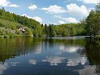 Drhlenský rybník - Branžež