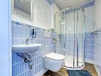 koupelna Hortenzie - vila k pronájmu Lázně Bělohrad