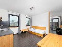 apartmán č. 2 (32 m2) - chalupa k pronájmu Sychrov - Vrchovina
