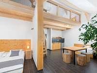 apartmán č. 4 (68 m2) - Sychrov - Vrchovina