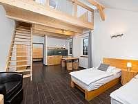 apartmán č. 5 (47 m2) - Sychrov - Vrchovina